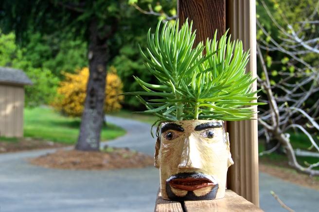 california gardening san jose