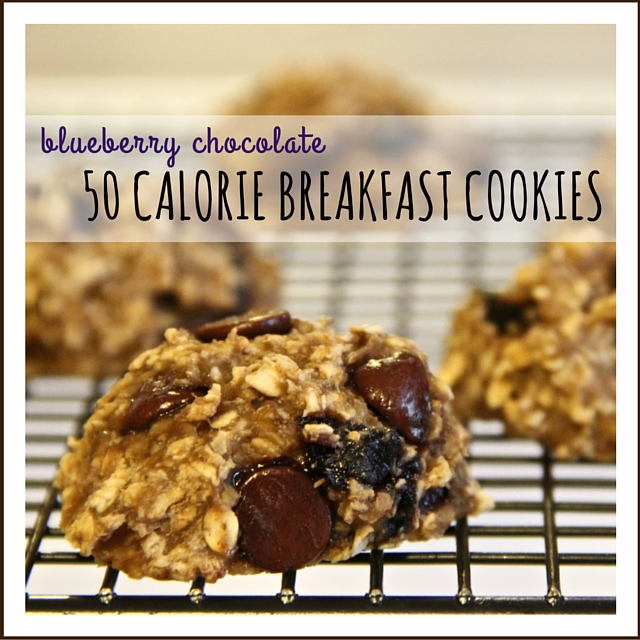 blueberry chocolate 50 calorie breakfast cookies